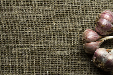 Organic garlic on a wooden table in the background