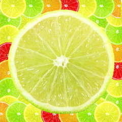 Multi color different citrus slices as background