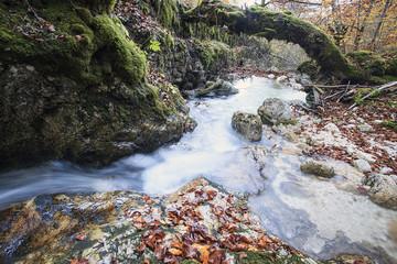 Piccola cascata che scorre nel bosco