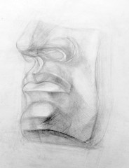 academic drawing pencil, illustration,anatomy, David's face