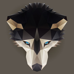 Vector low poly husky