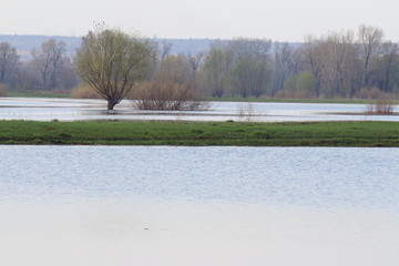 River flood in the april day