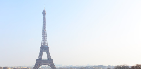 Wall Mural - Eiffel tower and Paris skyline