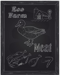 young beautiful duck on a farm and eco meat
