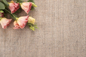Flowers on a old burlap