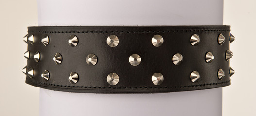 Black leather collar with stainless steal spike studs