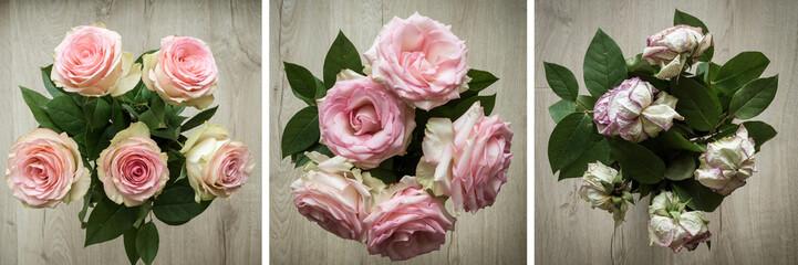 composition évolution bouquet