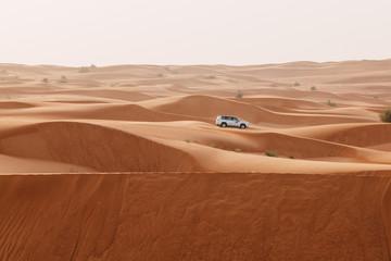 Sand dunes of the Arabian desert, close to Dubai in the United Arab Emirates. Soft vintage editing. Picture taken on a desert safari.