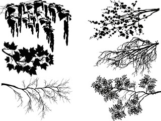 six spring tree branches on white Wall mural