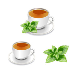 cup of tea.tea with mint.Vector illustration.