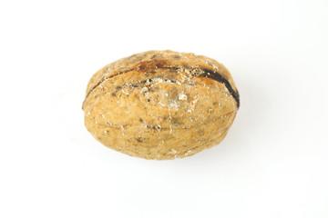 Wormy walnut on white