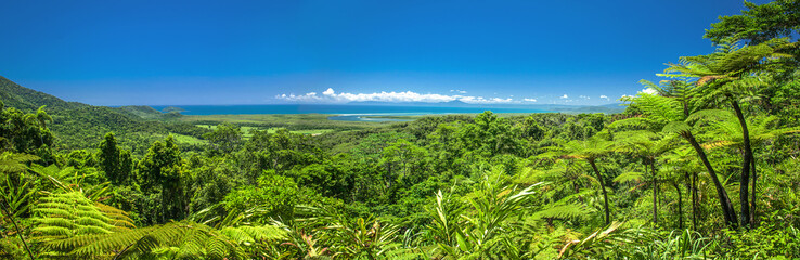 Stunning panoramic view of the daintree rain forrest and ocean.
