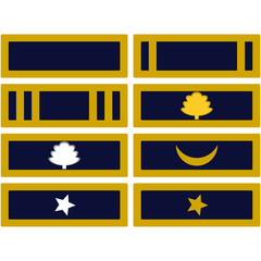 Insignia Army of Mississippi