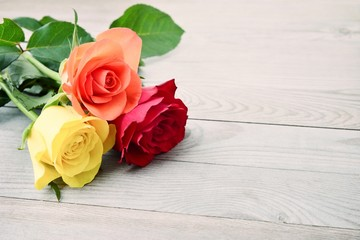 Roses. Roses of love. Photo of roses,roses on wood background. Beautiful roses, roses gift.