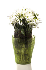 in a vase bouquet of white snowdrops