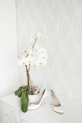 Wedding still life - Bridal bouquet and bride's shoes