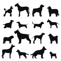 Dog breed vector black silhouette