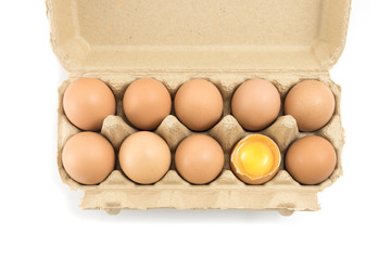 Organic fresh eggs