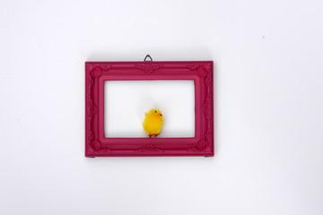 one chicken, chicken in a pink frame