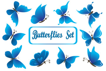 Set Blue Butterflies with Opened Wings Isolated on White Background
