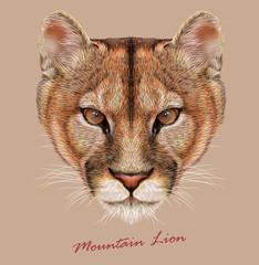Vector Illustrative Portrait of a Mountain Lion.