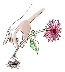 bloemen plukken met de hand