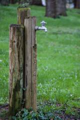 Water spigot in the woods