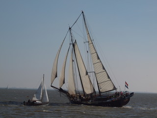 Segelschiff auf der Jade