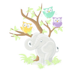 Cute Elephant with owls