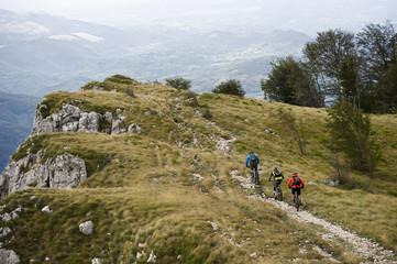 Mountain bikers riding bicycles on mountain