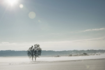 Winter landscape, Bavaria, Germany