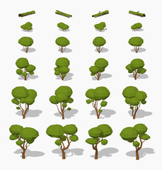 Low poly green trees. 3D lowpoly isometric vector illustration. The set of objects isolated against the white background and shown from different sides