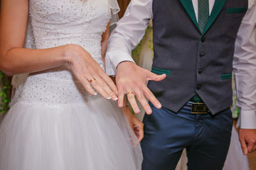 the bride and groom's hand close-up with wedding rings