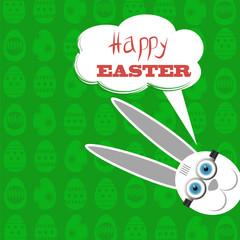 Easter Bunny. White  Rabbit.