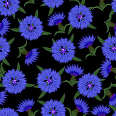 Seamless pattern, cornflowers on a black background.