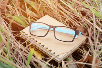 Notebook and glasses on grass