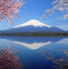Foto op Canvas Reflectie Mt.Fuji with water reflection at Lake Yamanaka, Japan