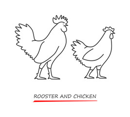 Vector outline silhouette rooster and chicken.