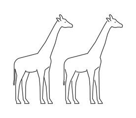 Vector outline giraffe. Line silhouette giraffe.