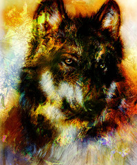 Wolf painting, color  background on paper , multicolor illustration