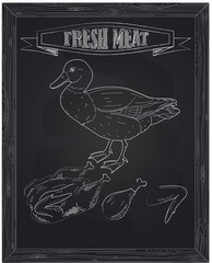 young beautiful duck and fresh meat