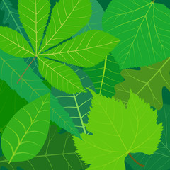 vector stylized green summer leaves decorative background