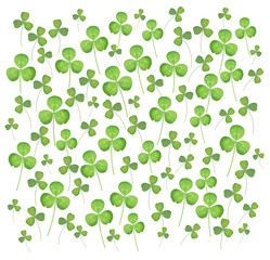 Background image of clover leaves on a white square background.