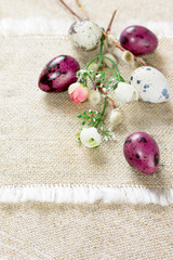 Easter composition with quail eggs and blooming willow, space fo