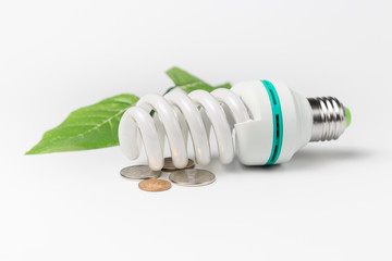 energy saving lamp coins and green leaves