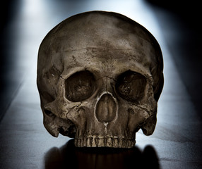 Scary scull