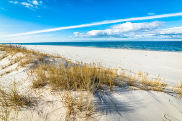 Beautiful sea landscape. Sandy beach and sand dune with grass.
