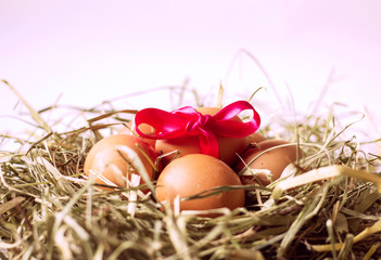 Fresh chicken eggs with hay nest and pink bow