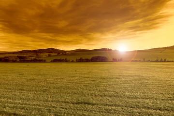 Spring beautiful landscape at sunset