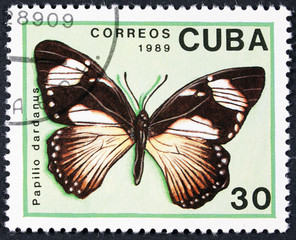 CUBA - CIRCA 1989: A stamp printed in Cuba shows butterfly African Swallowtail, Mocker Swallowtail or Flying Handkerchief - Papilio dardanus, circa 1989.
